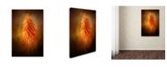"Trademark Global Jai Johnson 'Orange Blast In The Garden' Canvas Art - 24"" x 16"" x 2"""