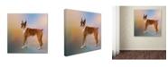 "Trademark Global Jai Johnson 'Boxer On A Beautiful Day' Canvas Art - 24"" x 24"" x 2"""