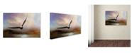 "Trademark Global Jai Johnson 'Eagle In The Marsh' Canvas Art - 19"" x 12"" x 2"""