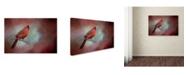 "Trademark Global Jai Johnson 'Greeting Fall' Canvas Art - 19"" x 12"" x 2"""