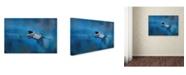 "Trademark Global Jai Johnson 'Flying Home' Canvas Art - 32"" x 22"" x 2"""
