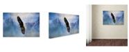 "Trademark Global Jai Johnson 'Soaring' Canvas Art - 24"" x 16"" x 2"""