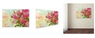 "Trademark Global Cora Niele 'Pink Bouquet' Canvas Art - 32"" x 22"" x 2"""