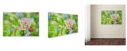 "Trademark Global Cora Niele 'Apple Blossom' Canvas Art - 32"" x 22"" x 2"""