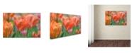 "Trademark Global Cora Niele 'Tulip Flower Orange Wings' Canvas Art - 19"" x 12"" x 2"""