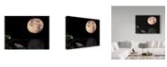 """Trademark Global Dana Brett Munach 'Fish is Fish' Canvas Art - 32"""" x 24"""" x 2"""""""