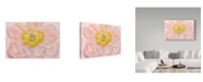 "Trademark Global Cora Niele 'Salmon Pink Peony' Canvas Art - 47"" x 30"" x 2"""