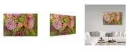 "Trademark Global Cora Niele 'Hello Autumn' Canvas Art - 32"" x 22"" x 2"""