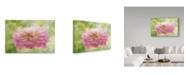"Trademark Global Cora Niele 'Dahlia In Backlight' Canvas Art - 32"" x 22"" x 2"""