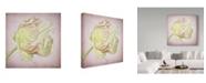 "Trademark Global Cora Niele 'Pink Parrot Tulip Painting Iii' Canvas Art - 18"" x 18"" x 2"""