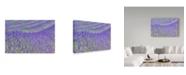 "Trademark Global Cora Niele 'Lavender' Canvas Art - 24"" x 16"" x 2"""
