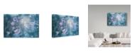 "Trademark Global Delphine Devos 'Natures Jewelry' Canvas Art - 32"" x 22"" x 2"""