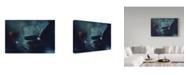 "Trademark Global Delphine Devos 'Moonlight Shadows' Canvas Art - 19"" x 2"" x 12"""