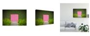 "Trademark Global David Jordan Williams 'Pink Brick Door' Canvas Art - 32"" x 2"" x 22"""