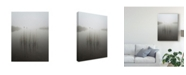 "Trademark Global David Ahern 'Reeds In The Mist' Canvas Art - 35"" x 2"" x 47"""