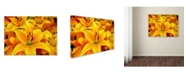 "Trademark Global The Lieberman Collection 'Yellow Flower 2' Canvas Art - 19"" x 14"" x 2"""