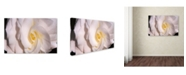 """Trademark Global The Lieberman Collection 'White Flowers 2' Canvas Art - 24"""" x 16"""" x 2"""""""