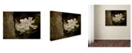 "Trademark Global Jai Johnson 'The Scent Of The Gardenia' Canvas Art - 24"" x 18"" x 2"""