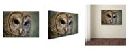 "Trademark Global Jai Johnson 'Who Loves Ya Baby' Canvas Art - 47"" x 35"" x 2"""