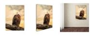 "Trademark Global Jai Johnson 'The Queen At Rest Bald Eagle' Canvas Art - 47"" x 35"" x 2"""