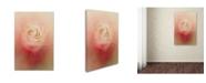 "Trademark Global Jai Johnson 'Valentine Rose' Canvas Art - 47"" x 30"" x 2"""