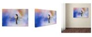 "Trademark Global Jai Johnson 'Winter Morning Chickadee' Canvas Art - 47"" x 30"" x 2"""