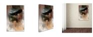"Trademark Global Jai Johnson 'Winter Eagle 1' Canvas Art - 24"" x 16"" x 2"""
