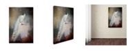 "Trademark Global Jai Johnson 'White Beauty' Canvas Art - 24"" x 16"" x 2"""