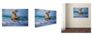 "Trademark Global Jai Johnson 'Treasures For The Nest' Canvas Art - 32"" x 22"" x 2"""