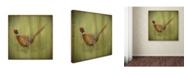 "Trademark Global Jean Plout 'Wilderness Lodge 7' Canvas Art - 14"" x 14"" x 2"""