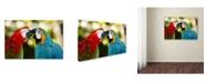 "Trademark Global Mike Jones Photo 'The Kiss' Canvas Art - 19"" x 12"" x 2"""