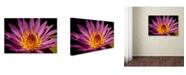 "Trademark Global Mike Jones Photo 'Fairchild Gardens Lily' Canvas Art - 24"" x 16"" x 2"""