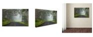 "Trademark Global Mike Jones Photo 'Foggy Road near Dillon Beach' Canvas Art - 32"" x 22"" x 2"""