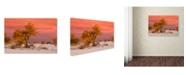 "Trademark Global Mike Jones Photo 'White Sands Yellow Tree' Canvas Art - 24"" x 16"" x 2"""