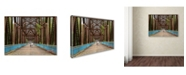 "Trademark Global Mike Jones Photo 'Rt 66 Chain Of Rocks Bridge' Canvas Art - 32"" x 24"" x 2"""
