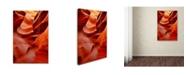 "Trademark Global Mike Jones Photo 'Lower Antelope Canyon Ladder' Canvas Art - 24"" x 16"" x 2"""