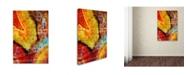 "Trademark Global Natasha Wescoat 'Gate 10' Canvas Art - 47"" x 30"" x 2"""