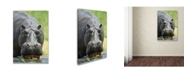 """Trademark Global Robert Harding Picture Library 'Hippo' Canvas Art - 32"""" x 22"""" x 2"""""""