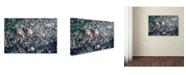 "Trademark Global Robert Harding Picture Library 'Dark Abstract Texture' Canvas Art - 24"" x 16"" x 2"""