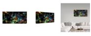 "Trademark Global RUNA 'Cosmic 32' Canvas Art - 24"" x 12"" x 2"""