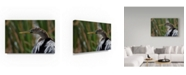 "Trademark Global Robert Michaud 'Anhinga Center' Canvas Art - 19"" x 12"" x 2"""