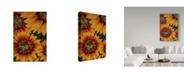 "Trademark Global Moises Levy 'Art Flower' Canvas Art - 47"" x 30"" x 2"""