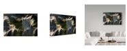"Trademark Global Milan Malovrh 'Esata Equina' Canvas Art - 32"" x 2"" x 22"""