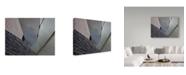 "Trademark Global Yvette Depaepe 'Lia Ge Guillemins' Canvas Art - 47"" x 2"" x 35"""