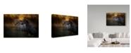 "Trademark Global Milan Malovrh 'Duel Horses' Canvas Art - 24"" x 2"" x 16"""