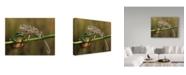 "Trademark Global Savas Sener 'Shut Up' Canvas Art - 24"" x 2"" x 18"""