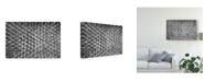 "Trademark Global Mitalapo 'Crowded' Canvas Art - 24"" x 2"" x 16"""