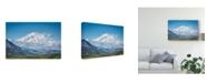 "Trademark Global Jeffrey C Sink 'Mt Denali Alaska' Canvas Art - 47"" x 2"" x 30"""