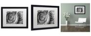 "Trademark Global Moises Levy 'Amonita 3' Matted Framed Art - 16"" x 20"" x 0.5"""