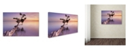 "Trademark Global Moises Levy 'Water Tree XI' Canvas Art - 47"" x 30"" x 2"""